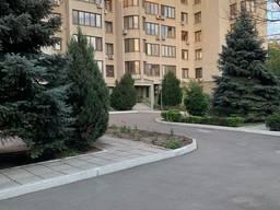 2 комн. 117 метров проспект Шевченко