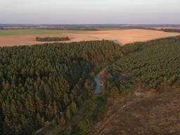 6 га ОСГ, расположен на русле малой реки в окружении леса