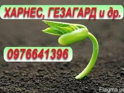 Ацетохлор 900 20л