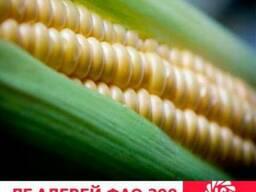 Адевей кукуруза купить, Адевей цена