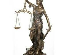 Адвокат по кримінальним справам Житомир