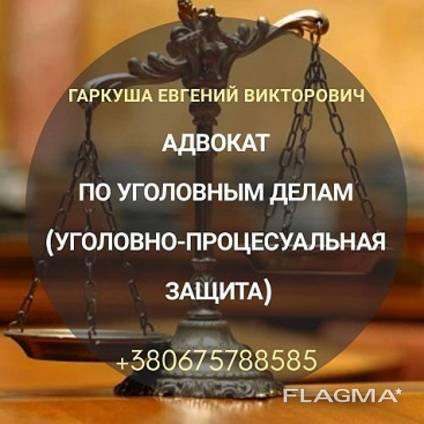 Адвокат у кримінальних справах в Києві.