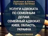 Адвокат в Києві. Сімейний адвокат. - фото 1