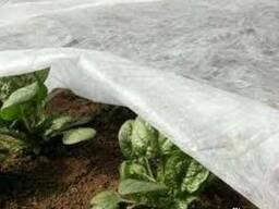 Агроволокно, геотекстиль 3,2-10,5м ширина Бровары