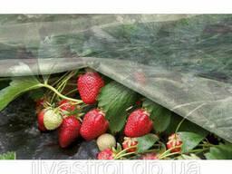 Агроволокно белое Agreen 30 плотность, ширина 1, 6 м длина 100 м