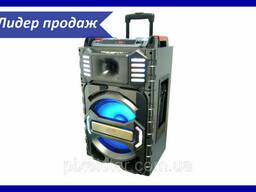 Активная напольная акустическая система МТ-13 + 2 микрофона