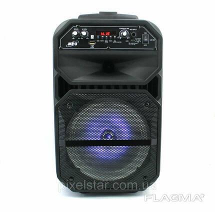 Акустическая Bluetooth колонка чемодан W6009 микрофон