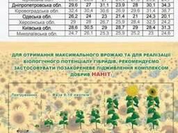 Богдан подсолнечник купить, Богдан цена