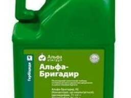 Альфа-Бригадир - гербіцид проти бурянів в посівах буряку.