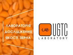 Аналіз якості зерна | UGTC. laboratory