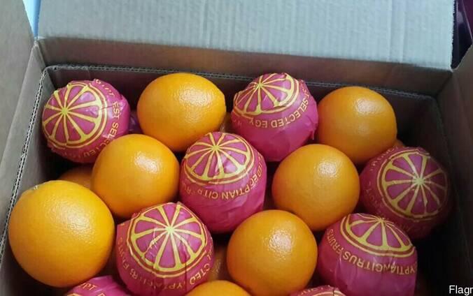 Апельсин, мандарин, клубника, лимон