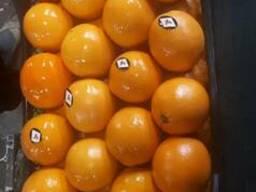 Апельсин W. Navel