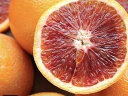 Апельсини Пакистан. 100% найкраща ціна
