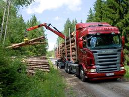 Аренда лесовоза манипулятора, перевозка леса, Закарпатье