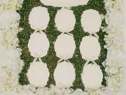 Аренда план рассадки гостей на свадьбу Киев #7