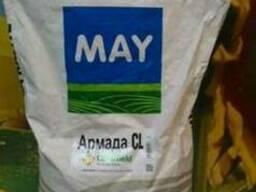 Армада КЛ засухоустойчивый гибрид (May Agro Seed) (Турция)