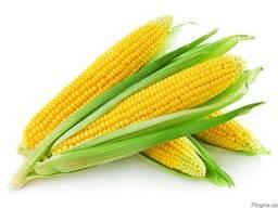 Ароматизатор Кукуруза