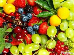 Ароматизатор Микс фруктовый