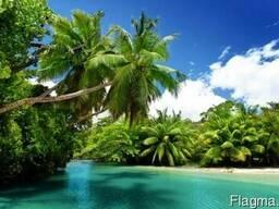 Ароматизатор пищевой Seychelles, 1 л