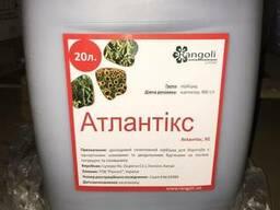 Атлантікс (Харнес) це досходовий селективний гербіцид