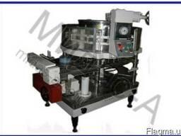Автомат дозировочно-наполнительный ДН2-03-160 для наполнения