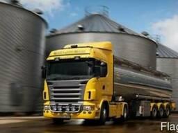 Автомобильные перевозки грузов из/в Украину