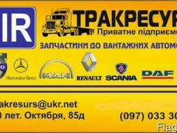 Автозапчасти DAF MAN Scania Iveco Renault Volvo