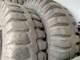 Куплю шины на фронтальный погрузчик.