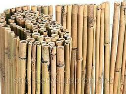 Бамбуковый забор d 12-14 мм (6000х1500)