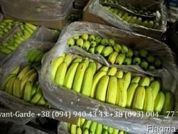 Бананы оптом (Эквадор). Лучшее предложение в Украине. Звоните