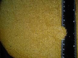 Барда після спиртова кукурудзяна суха DDGS