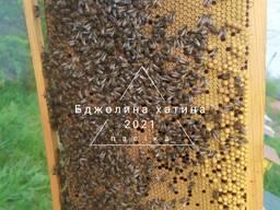 Доставлю бджолопакети по Україні