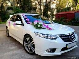Белый автомобиль Хонда Акорд на свадьбу