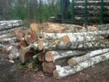Продам дрова березы - фото 2