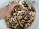 Білий гриб сушений - фото 4