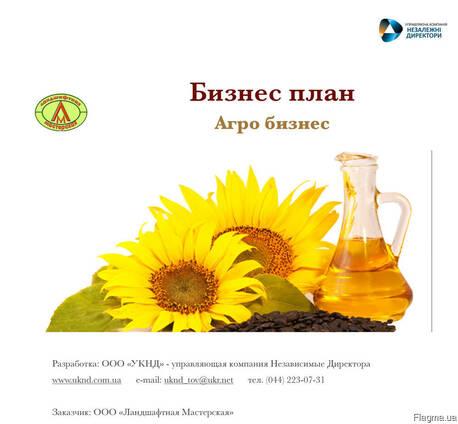 Бизнес планы проектов агробизнеса