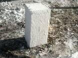 Блок ракушняковый - фото 1