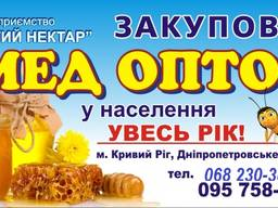 Закуповуємо оптом мед