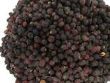 Боярышник (плоды сушёные) - фото 2