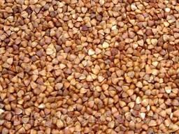 Buckwheat cereal