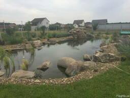 Будівництво плавальних ставків. Ставки купальні. Экопруд
