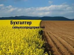 Бухгалтер для предприятияй, занимающихся сельским хозяйством