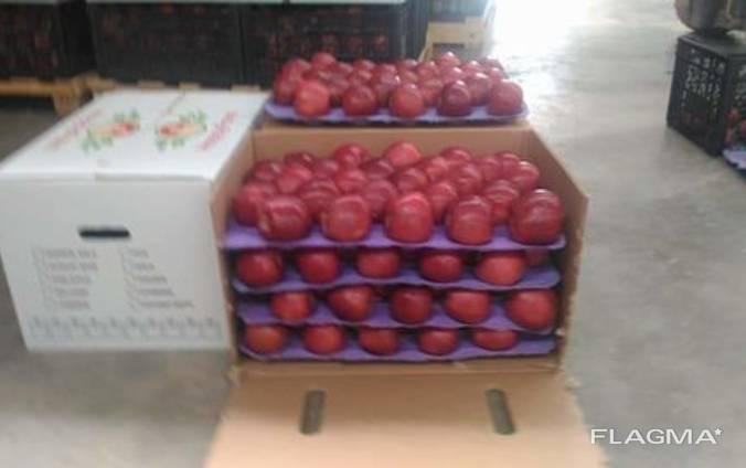 Бушель для яблок на 4 подложки 500х300х330