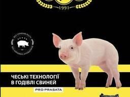 БВМД та премікс для лактуючих свиноматок