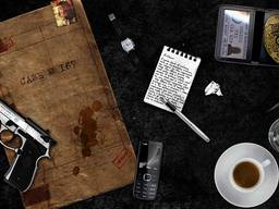 Помощь детектива