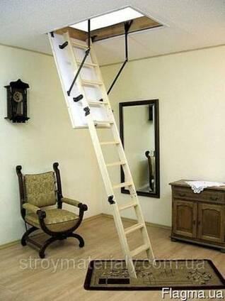 Чердачная лестница Оман термо