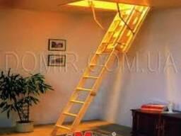 """Чердачные лестницы """"Oman"""""""