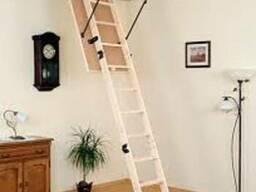 Чердачные лестницы OMAN от 1850грн