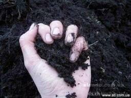 Чернозем торфокрошку глину песок шебень отсев Доставим