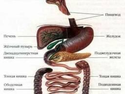 Чистка кишечника-гидроколонотерапия.